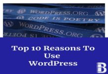 Top-10-Reasons-To-Use-WordPress